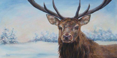 Snow Deer. 30x60cm Deep Boxed Canvas £140